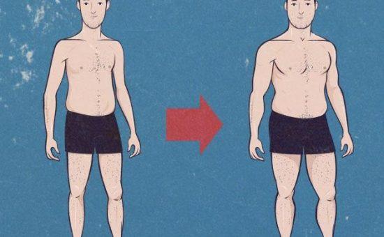راهکار هایی برای چاق شدن