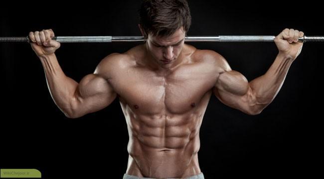 دست آوردن توده های عضلانی