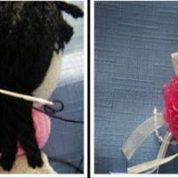 چگونه یک عروسک جورابی ساده درست کنیم؟