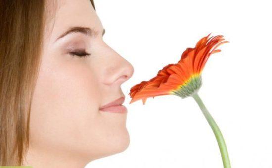 چگونه حس بویایی خود را تقویت کنیم ؟
