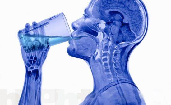 چگونه آب بدنمان را تامین کنیم ؟