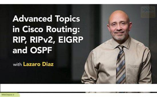 چگونگی اختصاص دادن Router-id در OSPF ؟