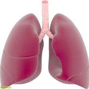 چگونه ریه های سالم و قوی داشته باشیم ؟