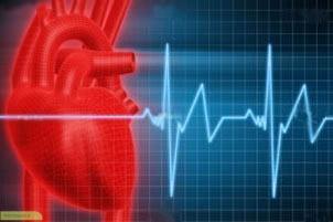 چگونه از بیماری قلبی پیشگیری کنم ؟
