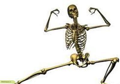 چگونه استخوانهای محکم و قوی داشته باشیم؟