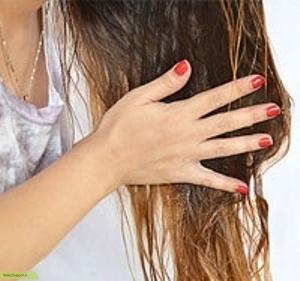 چگونه با استفاده از روغن زیتون موهای سالم و زیبا داشته باشیم ؟