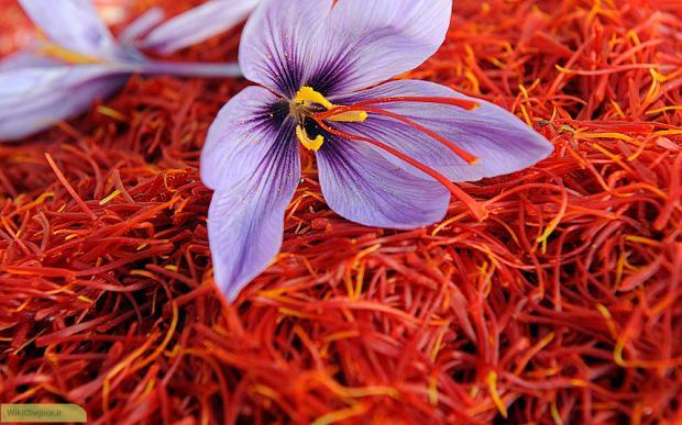 چگونه زعفران بر روی درمان اختلالات قاعدگی تاثیر میگذارد؟