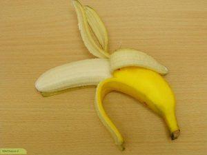 fruit_16_20091105_1549778092