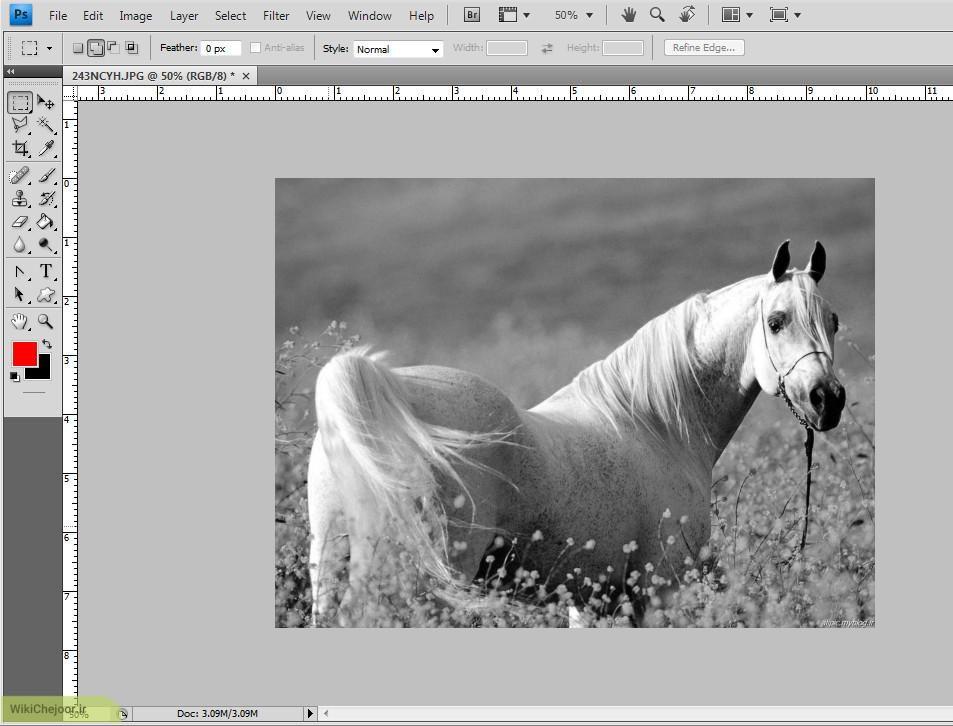 چگونه یک عکس را در فتوشاپ سیاه و سفید کنیم؟