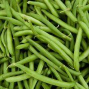 چگونه لوبیا سبز بکاریم؟
