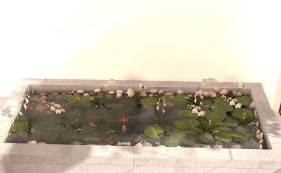 چگونه یک استخر گلخانه ای بسازیم؟