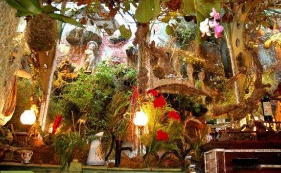 چگونه گلخانه خانگی بسازیم؟