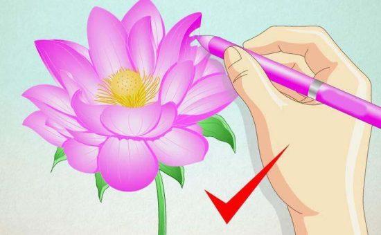 چگونه یک گل نیلوفر آبی رسم کنیم؟؟