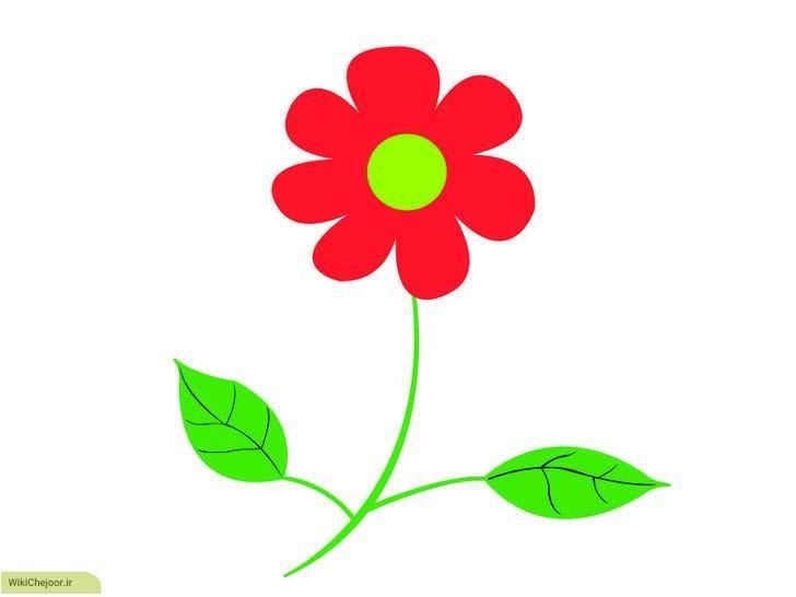 چگونه یک گل خود رو رسم کنیم؟؟