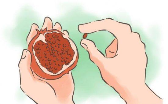 چگونه  دانه های انار در گلدان جوانه میزند؟