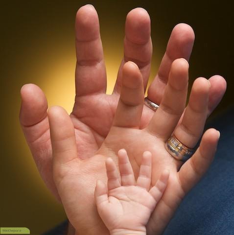 چگونه خانواده خوشبخت داشته باشیم؟؟