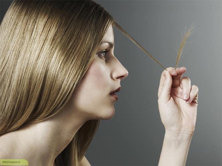چگونه میتوان موهای آسیب دیده را با روشهای خانگی ترمیم کرد