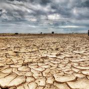 چگونه با انواع خشک سالی آشنا شویم؟