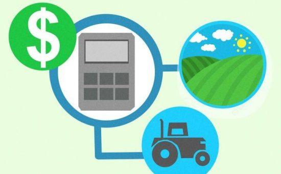 چگونه قبل از شروع زراعت برنامه داشته باشیم؟