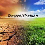 چگونه باید از پیشروی بیابان و کویر جلوگیری نمود؟