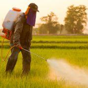 چگونه کود را در مزارع پخش کنیم؟
