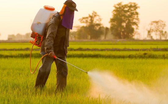 چگونه با علف کش های شیمیایی ، براساس روش مصرف و مکانیسم تاثیر بر علف های هرز آشنا شویم؟
