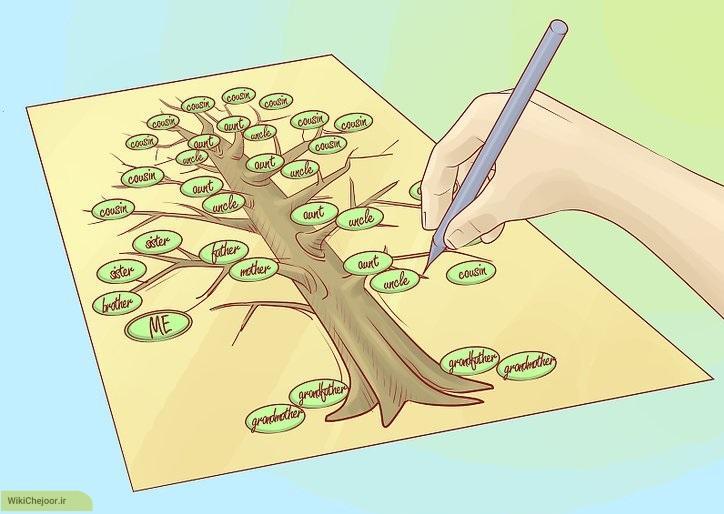 چگونه یک درخت خانواده (شجره نامه) طراحی و رسم کنیم؟