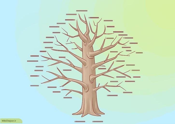 تهیه ی پیش نویس برای طراحی درخت خانواده
