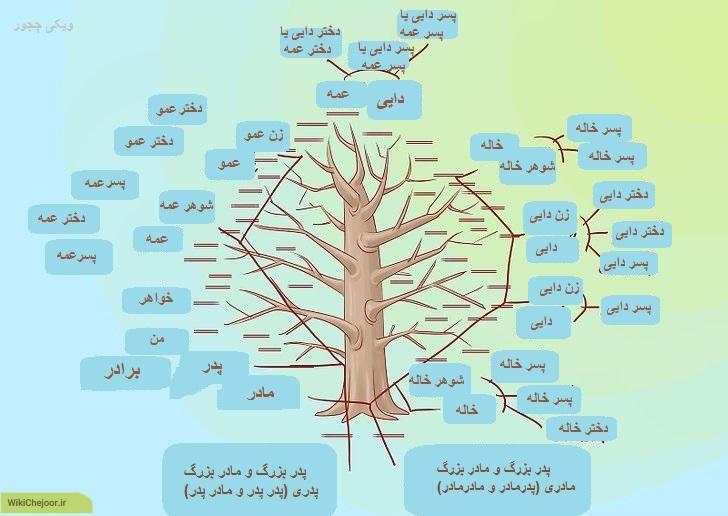 نمونه فارسی شجره نامه