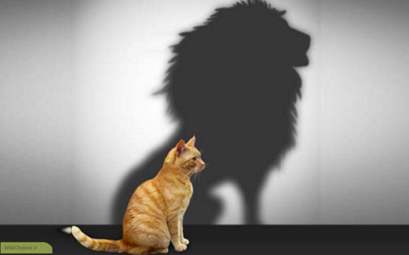 چرا مبارزه با احساس کمبود عزت نفس دشوار است