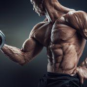 چگونه عضلات دوسر بازورا پرورش دهیم؟ (قسمت ۲)