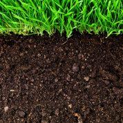 چگونه اجزای تشکیل دهنده خاک را بشناسیم؟