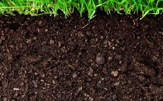چگونه خاک ورزی مناسبی برای زمین زراعتمان انجام دهیم؟