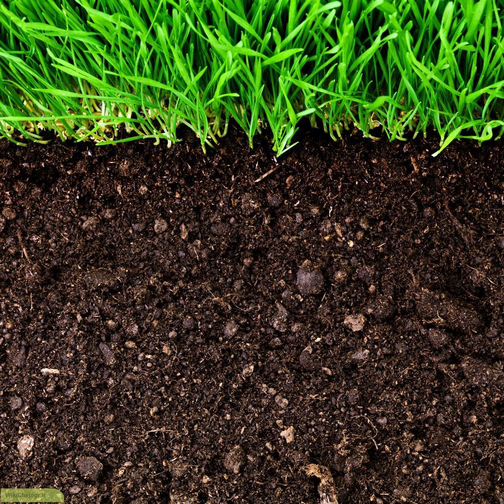 خاک باغبانی | چگونه خاک های باغبانی تهیه نماییم؟