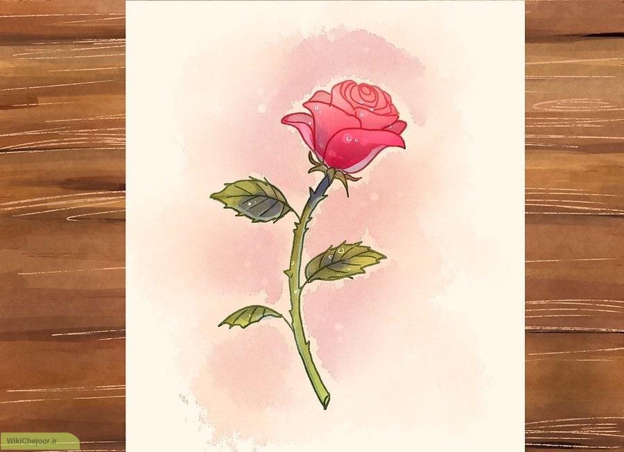 چگونه گل رز با ساقه رسم کنیم؟