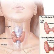 چگونه تومورهای بدخیم هیپوفارنکس ایجاد می شود