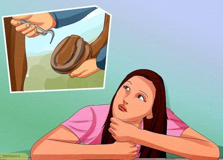 چگونه یک نعلبند شوید؟