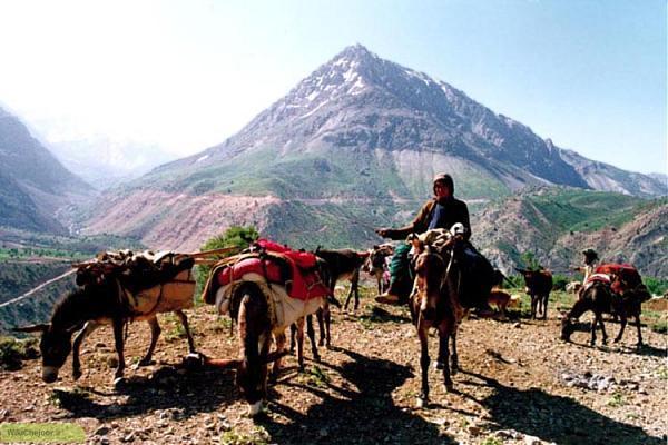 جاهای تاریخی و باستان استان