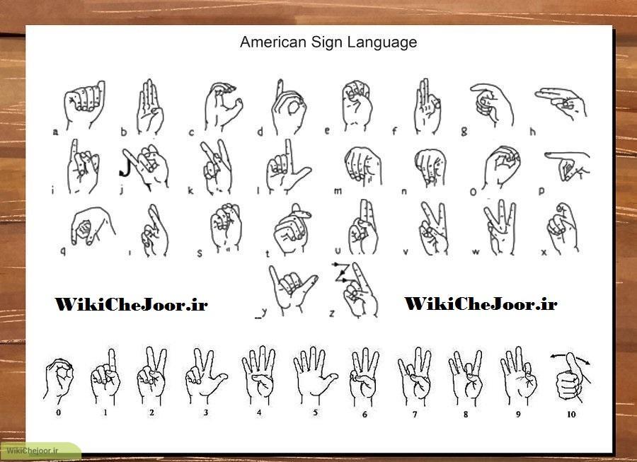 استفاده از زبان علائم (ASL)