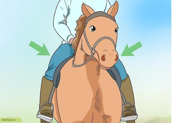 اصول اسب سواری به روش انگلیسی
