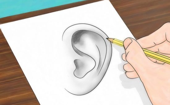 چگونه گوش رسم کنیم؟