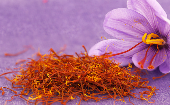 چگونه زعفران پرورش دهیم؟