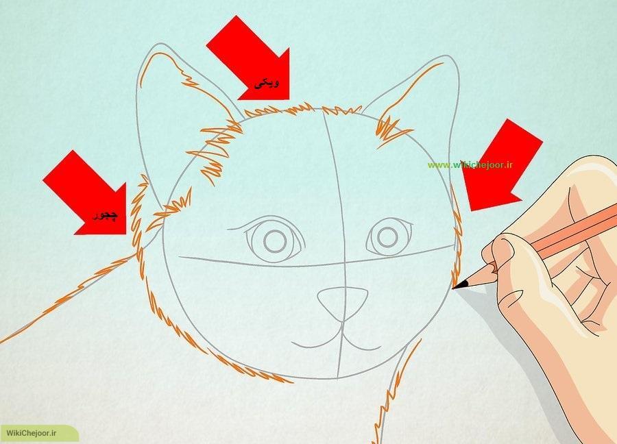 نقاشی صورت گربه