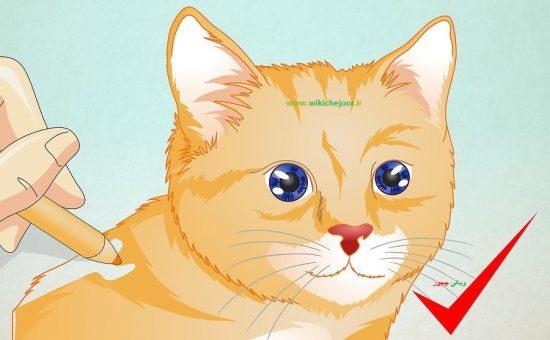 چگونه صورت گربه رسم کنیم؟
