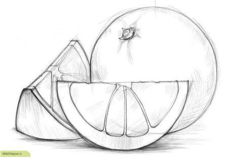 آموزش نقاشی پرتقال (1)