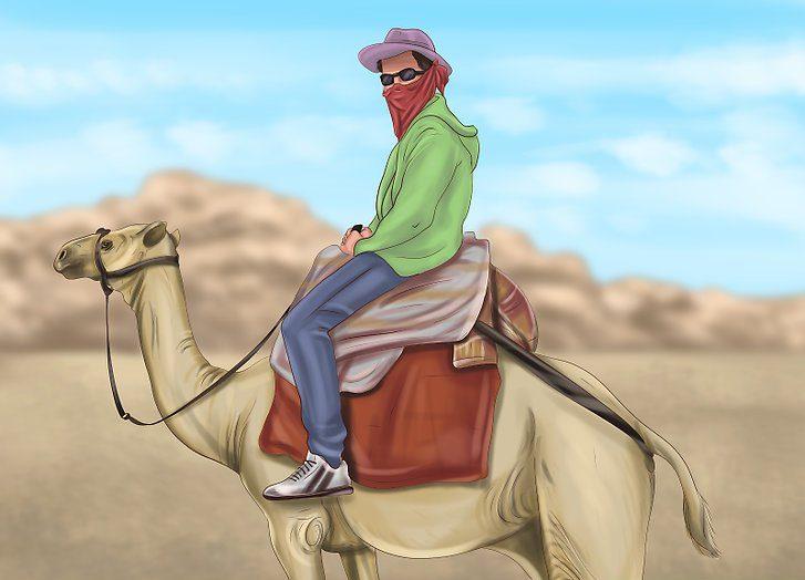 سوار شدن بر روی شتر
