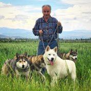 چجوری یک گرگاس را از سگ تشخیص بدیم؟