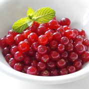 چگونه انگور فرنگی پرورش دهیم؟