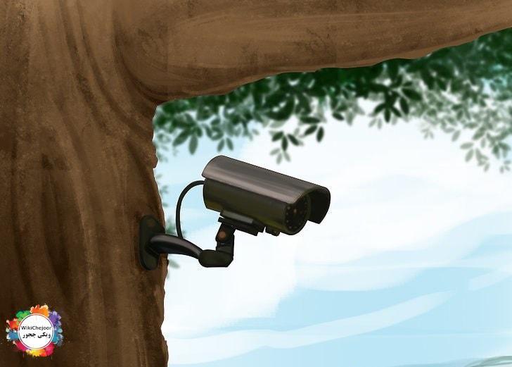 دوربین خود را در فضای باز پنهان کنید