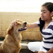 چگونه مراقب سگ خود باشیم؟